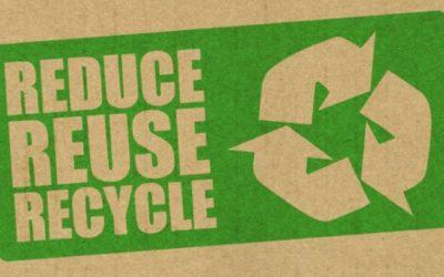 Essere sostenibili fa fatturare di più? Come ottenere vantaggio competitivo grazie alle etichette green