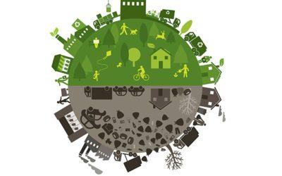Perché scegliere le etichette green: 3 motivi ecosostenibili