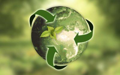 I passi per diventare un'azienda green al 100%: obiettivo 2030
