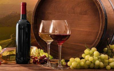 Look and Feel: le etichette sostenibili per vini e liquori
